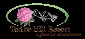 Client Slider Todke Hill Resort Logo for Digital Marketing